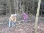 Vyčištění zahrady 16. a 23.11.2013